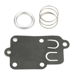 Briggs & Stratton 5021 Diaphragm Kit