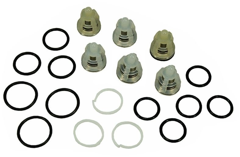 Comet Pressure Washer Pump Oem Valve Kit