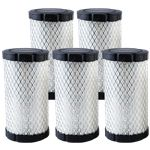 Genuine Briggs & Stratton Air Filter (5 X 594201)