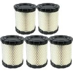 Genuine Briggs & Stratton Air Filter (5 X 798897)