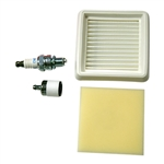 OEM Echo HCA-2620, PAS-2620, PE-2620 Plug & Filter Kit - You Can